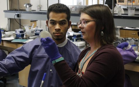 Biology department  starts pilot phage hunting class
