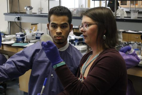 Biology department  starts pilot phage hunting class