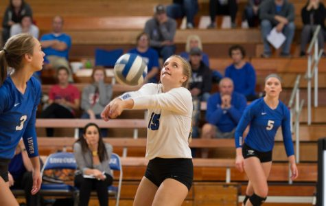 Volleyball suffers defeat to Wartburg at home