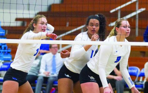 Volleyball seeded second in IIAC tournament