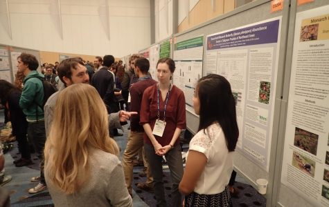 Students present at entomology conference