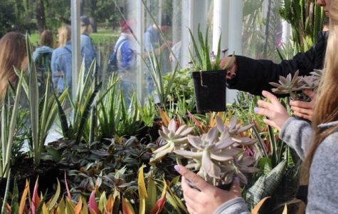 Plant Giveaway: Students eagerly take home their new plants
