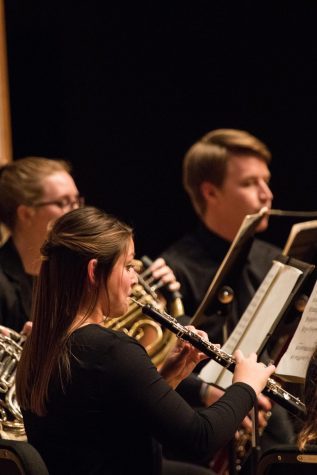 Musicians build skills in Chamber Orchestra
