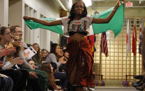 promoting cultural diversity