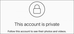 Finsta accounts are often private so that they cannot be accessed by the general public.