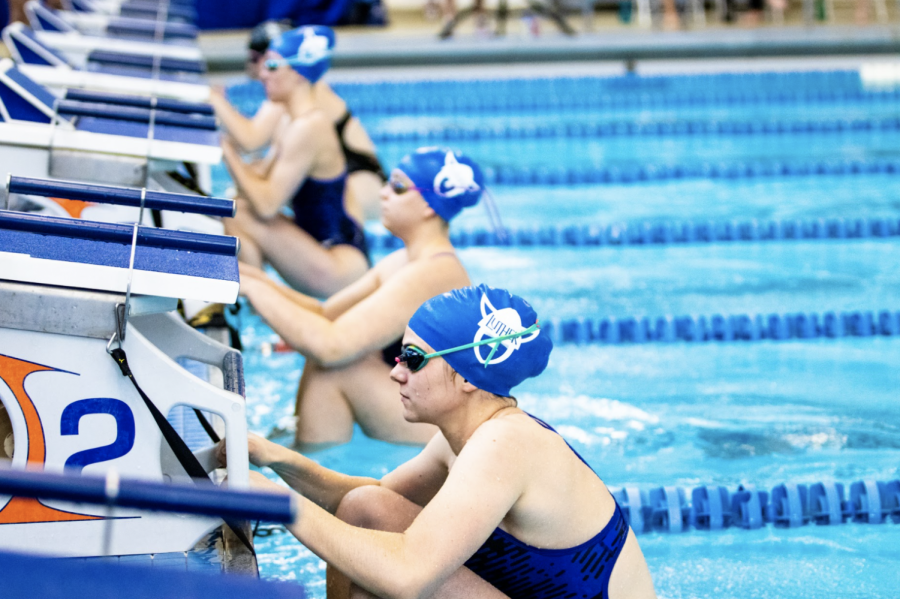 Norse swimmers prepare to do a backstroke. Photo courtesy of Photo Bureau.